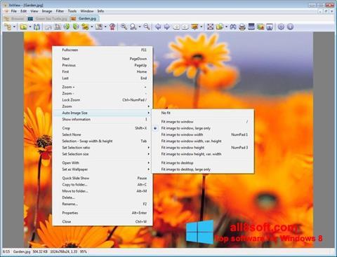 Screenshot XnView Windows 8