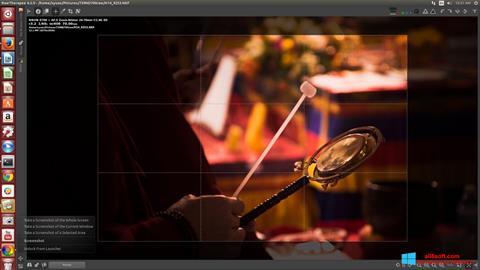Screenshot RawTherapee Windows 8
