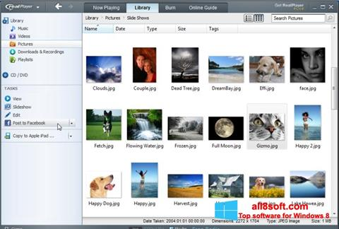 Screenshot RealPlayer Windows 8